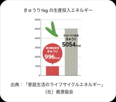 きゅうり1kg の生産投入エネルギー。出典:「家庭生活のライフサイクルエネルギー」(社)資源協会